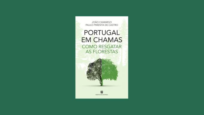 1 Minuto de Leitura - A Biblioterapeuta - Biblioterapia - Sandra Barão Nobre - Portugal em Chamas - João Camargo - Paulo Pimenta de Castro