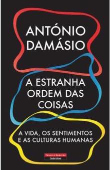 Sandra Barão Nobre - A Biblioterapeuta - Biblioterapia - A estranha ordem das coisas